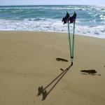 Spiaggia e Sport in Liguria